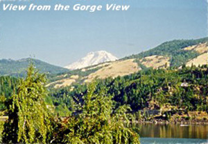 view from Gorge View